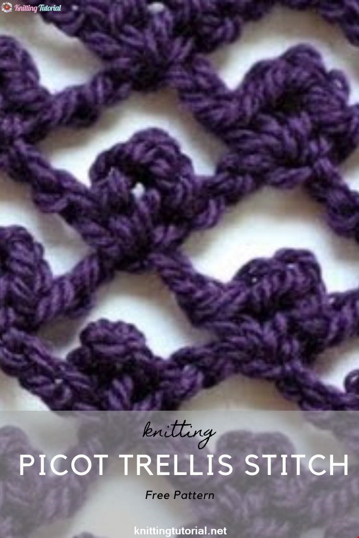 The Picot Trellis Stitch