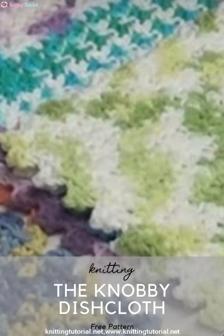 The Knobby Dishcloth