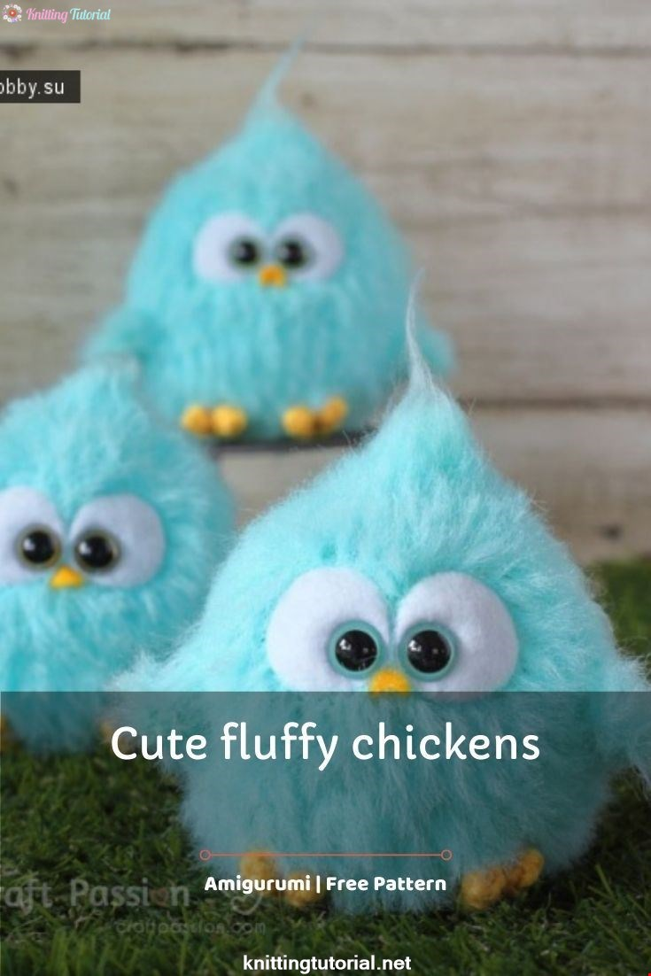 Cute fluffy chickens
