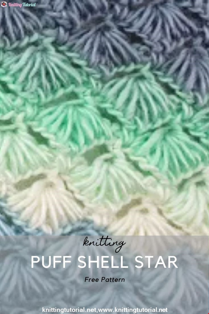 Puff Shell Star Stitch