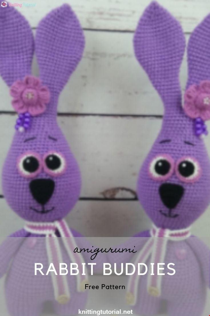 Rabbit Buddies