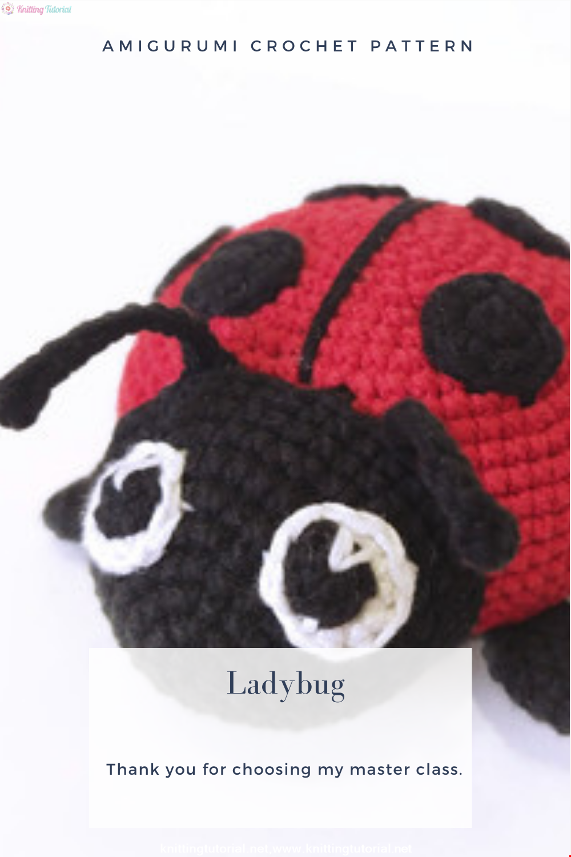 Amigurumi Ladybug Crochet Pattern